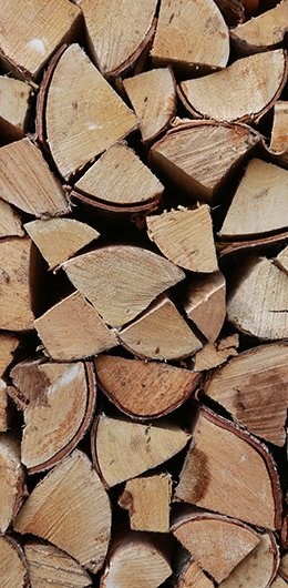 Seasons Logs